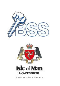 Isle of Man Government Business Support Scheme ISO systems grants
